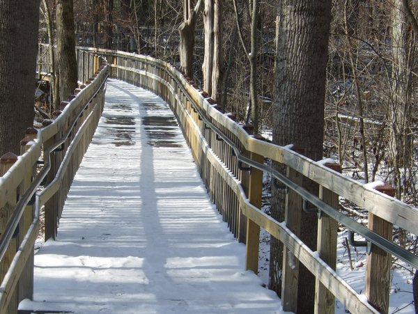 ADA Railing Boardwalk